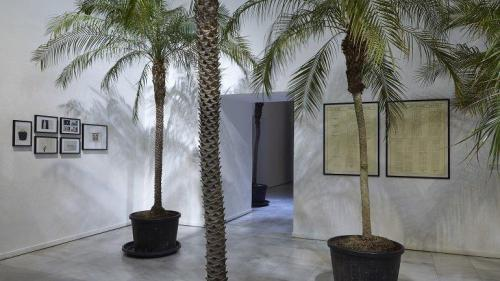 Vista de la exposición de Marcel Broodthaers en el Museo Nacional Centro de Arte Reina Sofía